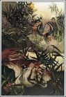 The Jungle Book, 1913